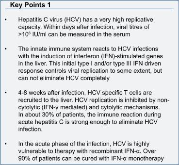 Innate and adaptive immune responses in HCV infections - ScienceDirect