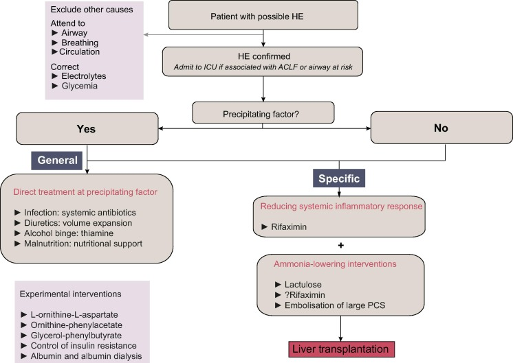 Hepatic encephalopathy in patients with acute decompensation