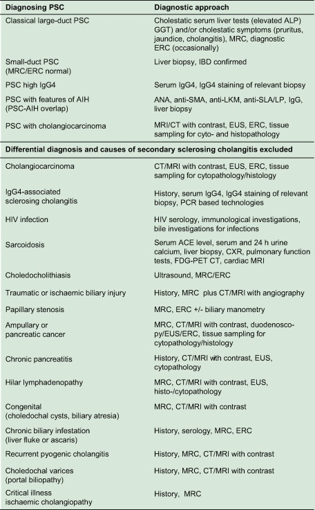 Primary sclerosing cholangitis – a comprehensive review