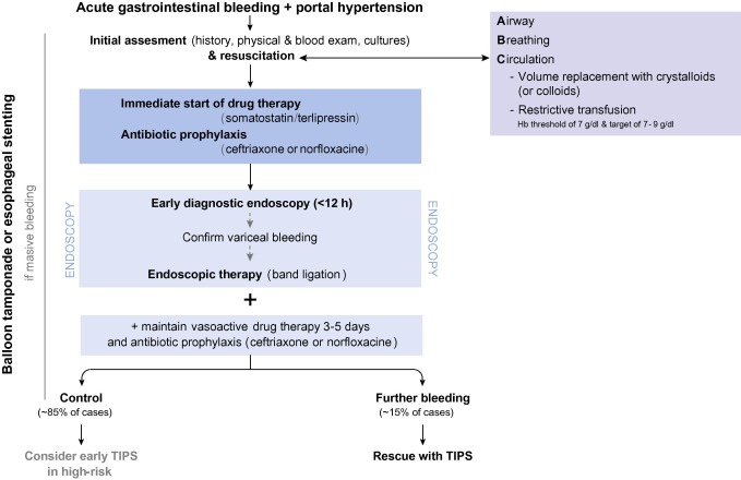 EASL Clinical Practice Guidelines for the management of patients