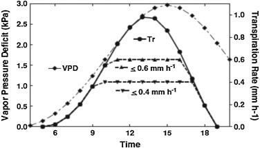 Limited-transpiration response to high vapor pressure