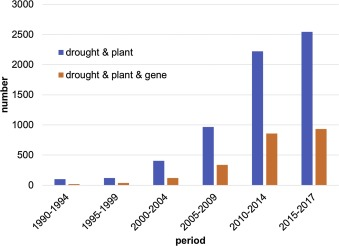 Where are the drought tolerant crops? An assessment of more than two