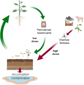 Biostimulants For Trees