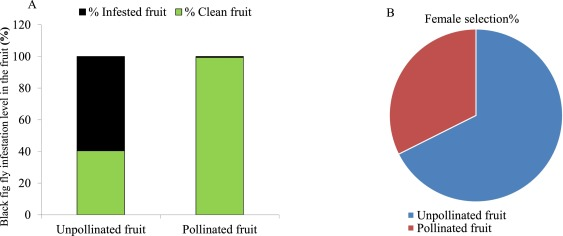 Characterization Of Terpene Synthase Genes Potentially Involved In Black Fig Fly Silba Adipata Interactions With Ficus Carica Sciencedirect