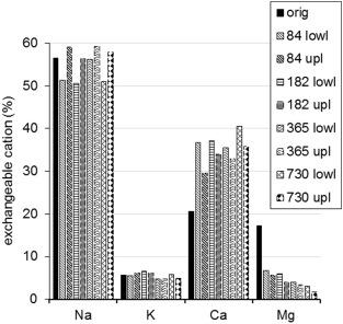 Key processes of long-term bentonite-water interaction at 90 °C