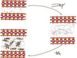 Novel multi amine-containing Gemini surfactant modified