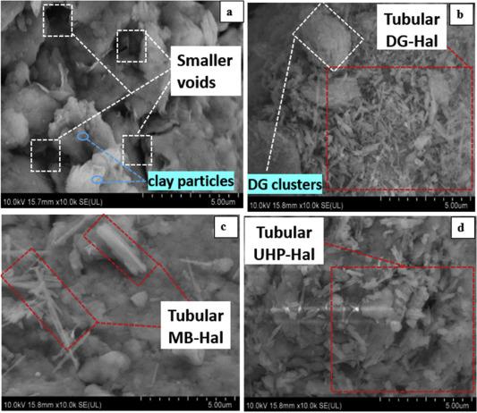 Stabilization of a soft marine clay using halloysite