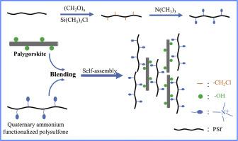 Enhancement of hydroxide conductivity by incorporating nanofiber-like palygorskite into quaternized polysulfone as anion exchange membranes