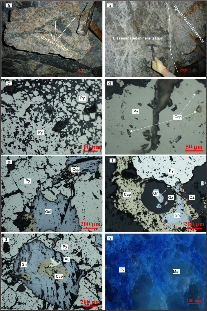 The relationship between gold mineralization, exhumation of.