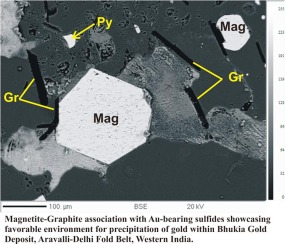 Chemistry of magnetite-apatite from albitite and carbonate