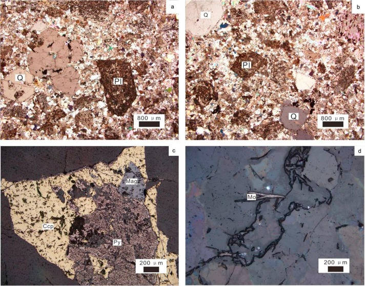 Early Jurassic porphyry copper mineralization in NE China: A