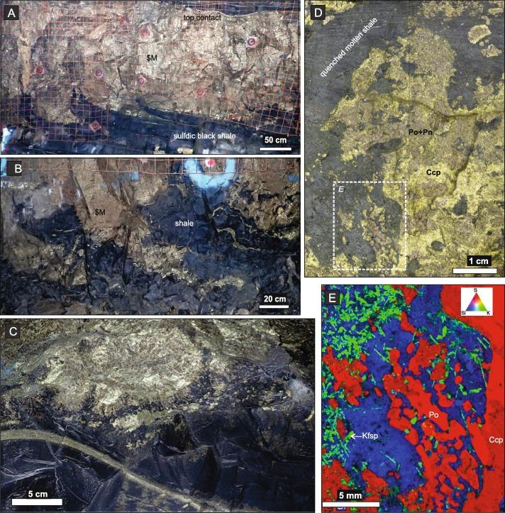 Sulfide-silicate textures in magmatic Ni-Cu-PGE sulfide ore ... on