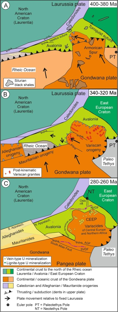 Phanerozoic uranium mineralization in
