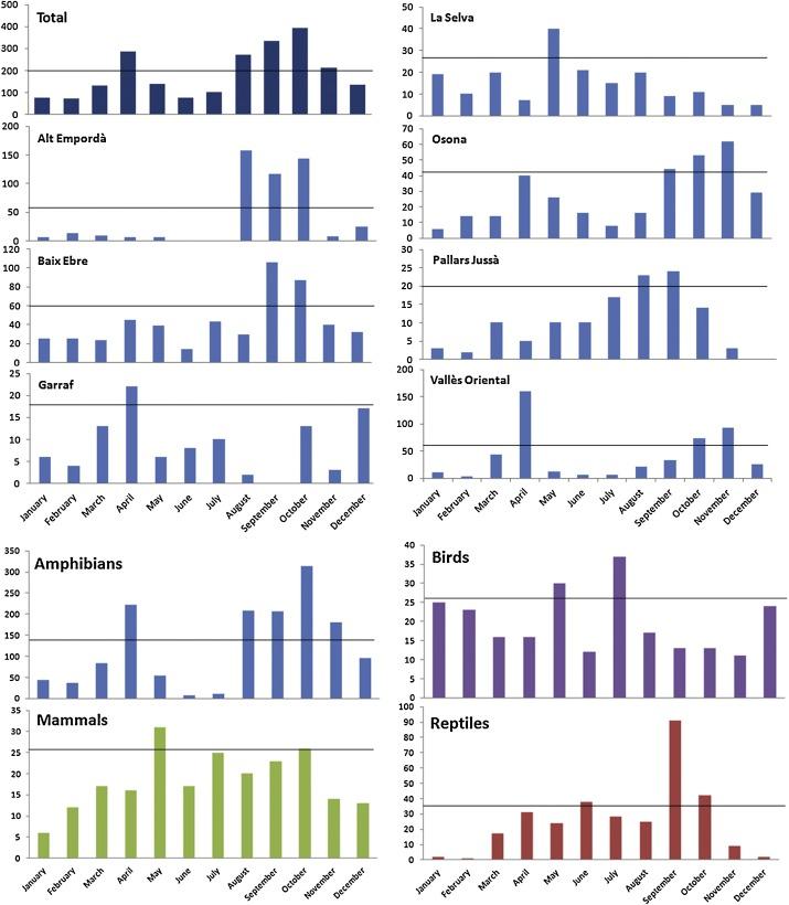 Seasonal variation in vertebrate traffic casualties and its