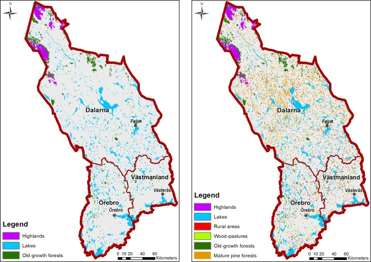 A bottomup approach to map land covers as potential green