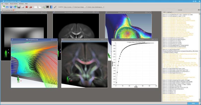A lightweight rapid application development framework for biomedical