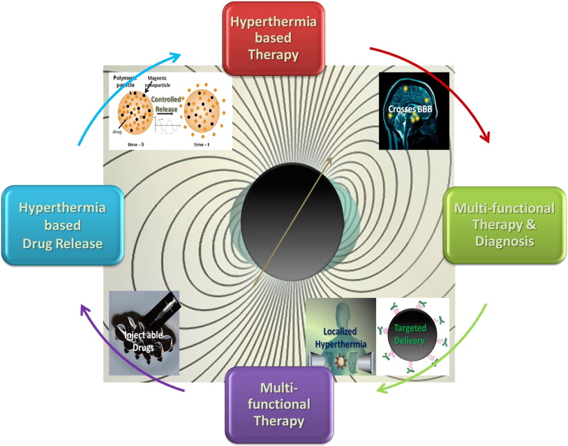 Magnetic nanomaterials for hyperthermia-based therapy and controlled ...