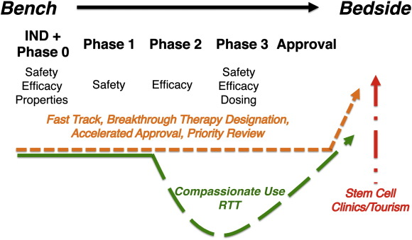 From bench to FDA to bedside: US regulatory trends for new