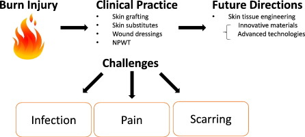 Burn Injury Challenges And Advances In Burn Wound Healing