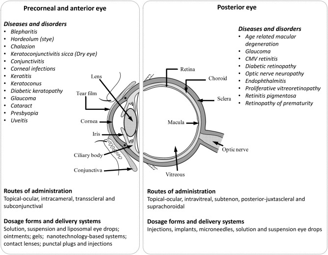 Ophthalmic gels: Past, present and future - ScienceDirect