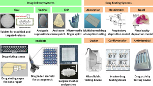3D printed drug delivery and testing systems — a passing fad