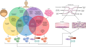 Progress, obstacles, and limitations in the use of stem cells in