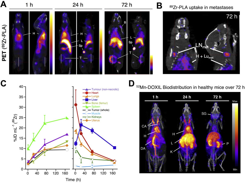 Nuclear imaging of liposomal drug delivery systems: A