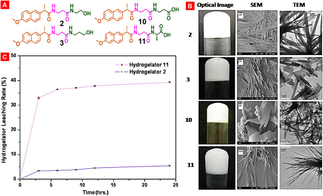 Nanocarrier-based systems for targeted and site specific
