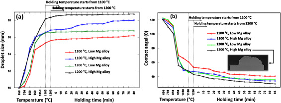 Wetting and reaction characteristics of crystalline and amorphous