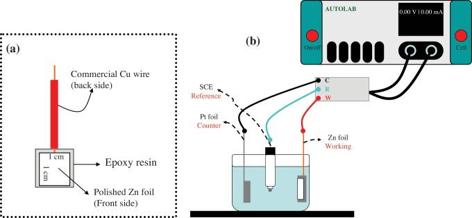 Tremendous Anodized Zno Nanostructures For Photoelectrochemical Water Splitting Wiring 101 Capemaxxcnl