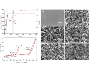The anodization synthesis of copper oxide nanosheet arrays