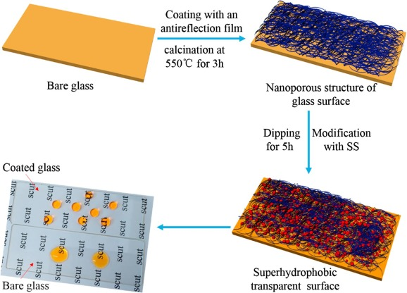 Durable superhydrophobic surface with highly antireflective