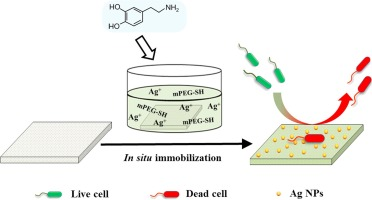 Facile and efficient in situ synthesis of silver nanoparticles on