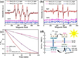 Synergistic effects of MoO2 nanosheets and graphene-like C3N4 for
