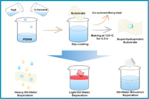 why is water a versatile solvent