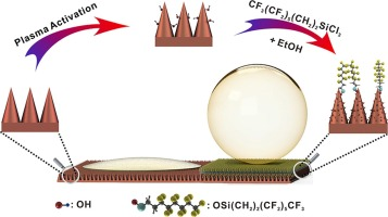 Fabrication of superamphiphobic Cu surfaces using hierarchical