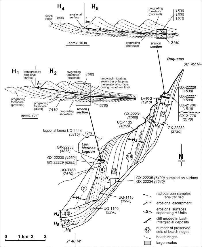 A Beach Ridge Progradation Complex Reflecting Periodical Sea Level