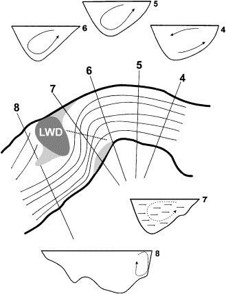 Influence Of A Large Woody Debris Obstruction On Three Dimensional