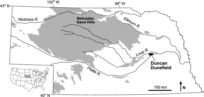 Late Holocene dune activity in the Eastern Platte River Valley ...