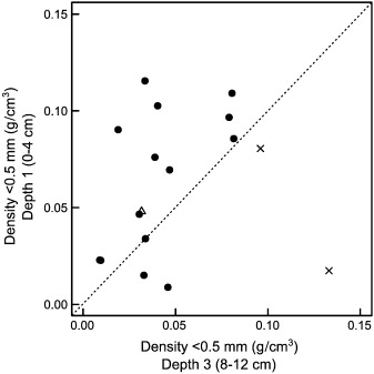 Geomorphic controls on fine sediment reinfiltration into
