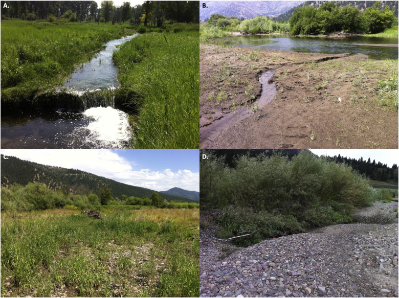 Nature's complex flume — Using a diagnostic state-and-transition ...