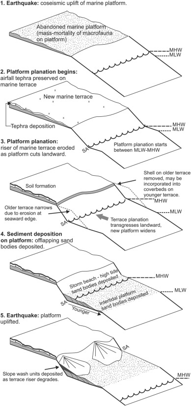 A geomorphic and tectonic model for the formation of the flight of