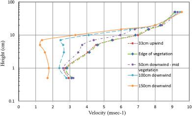 Wind flow and sedimentation in artificial vegetation: Field