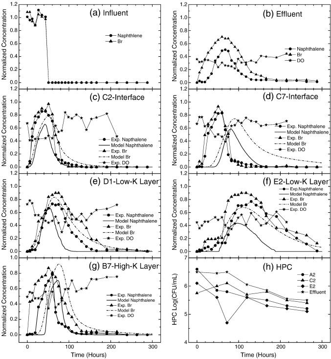 Laboratory-scale in situ bioremediation in heterogeneous ... on