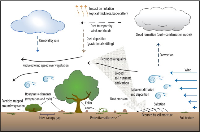 Enhancing wind erosion monitoring and assessment for us rangelands figure 1 ccuart Image collections