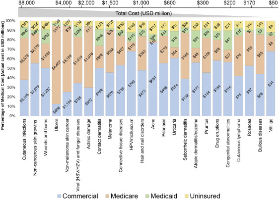 Contribution of health care factors to the burden of skin disease in