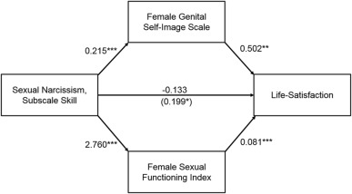 Sexual narcissism and its association with sexual and well