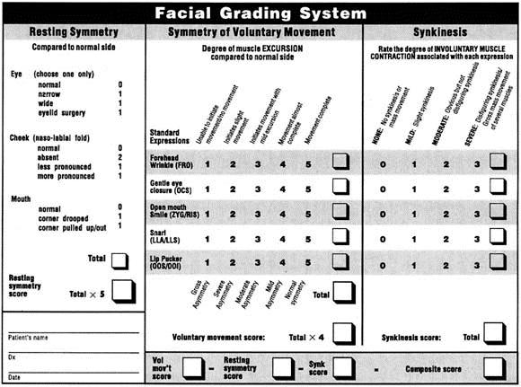 Nerve system Facial grading