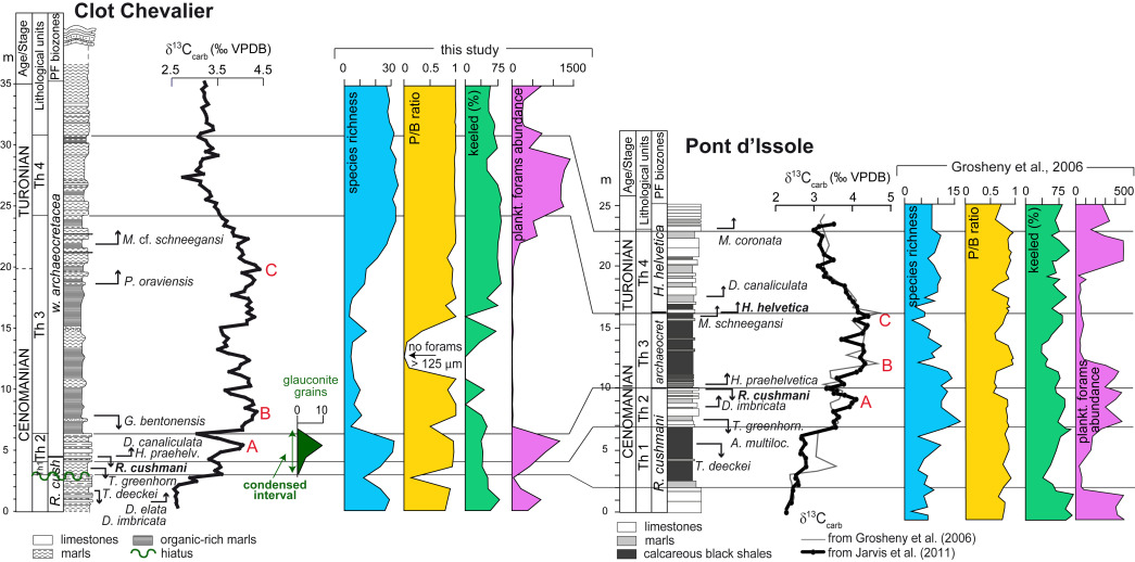Planktonic foraminiferal biostratigraphy and assemblage composition