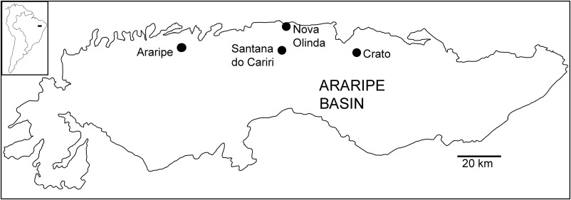 Unusual Soft Tissue Preservation In The Early Cretaceous Aptian - Crato map